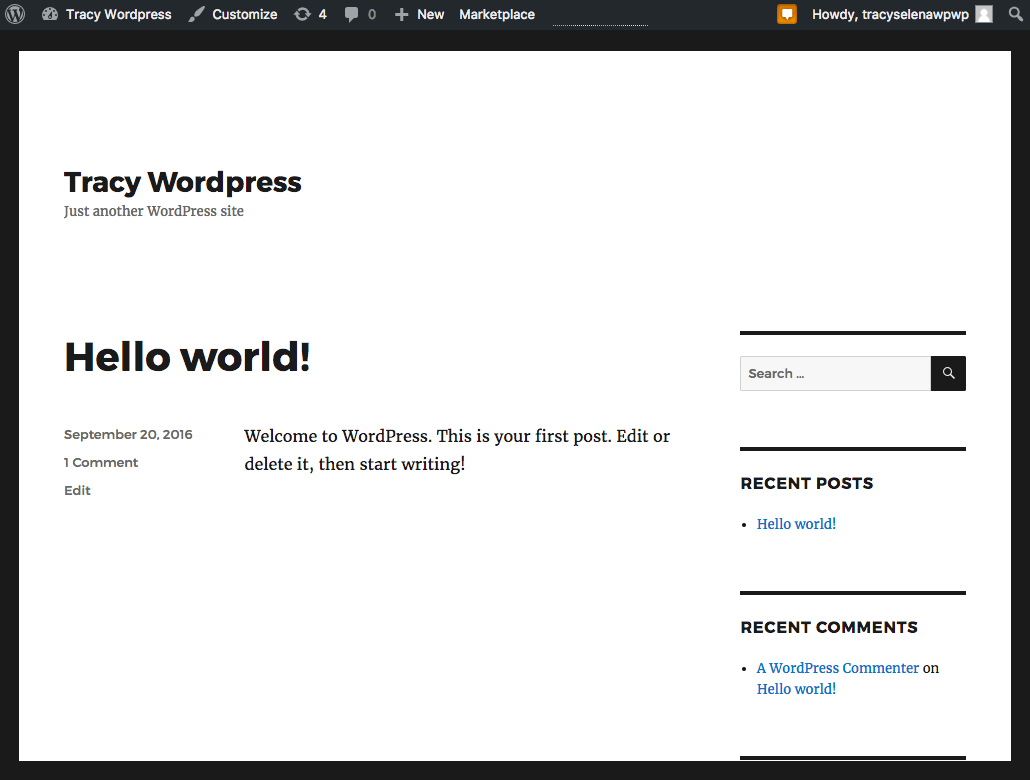 how to start a blog: default WordPress theme